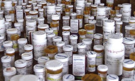 Pas d'augmentation des prescriptions d' opioïdes aux E.U. après réglementation du cannabis récréatif