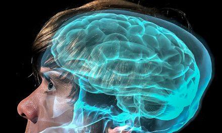 Addiction: quand notre cerveau se fait piéger