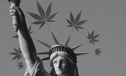 Les effets de la régulation du cannabis aux EU