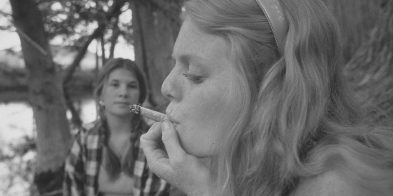 La changement récent de la perception des risques du cannabis chez les adolescents n'est pas accompagné par une augmentation simultanée de la consommation