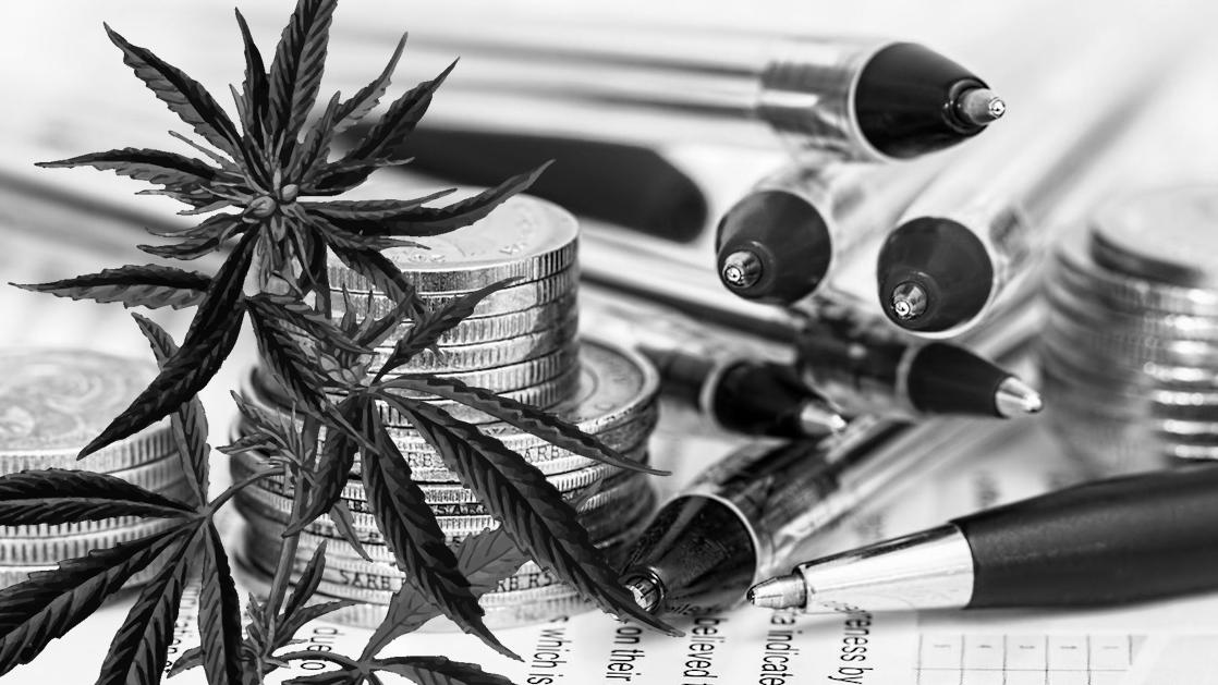 Une régulation stricte du marché du cannabis serait économiquement plus favorable que la prohibition