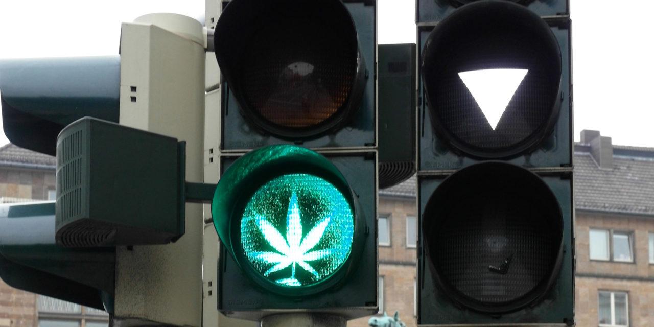 Le risque du passage à une consommation intraveineuse de drogues diminué par le cannabis