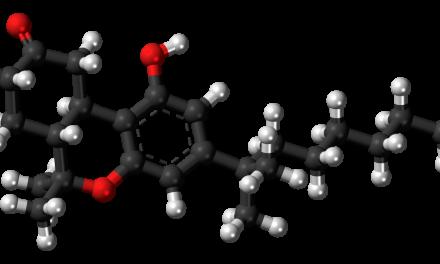 Le nabilone, cannabinoïde synthétique, peu efficace dans le traitement de l'addiction au cannabis