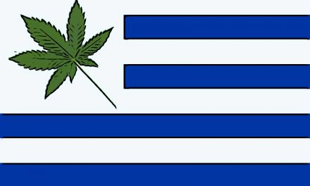 Le modèle uruguayen de régulation du cannabis