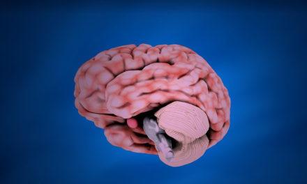 Le cannabidiol (CBD) normalise le fonctionnement cérébral des personnes à risque de psychose