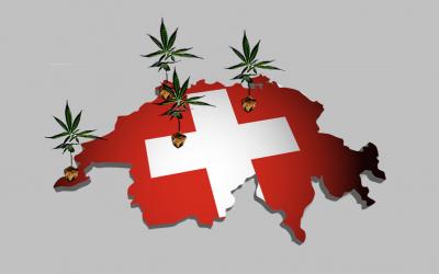 Vente régulée du cannabis en Suisse