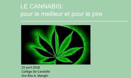 Le cannabis : pour le meilleur et pour le pire