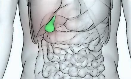 Les acides biliaires de l'intestin comme traitement de l'addiction à la cocaïne ?