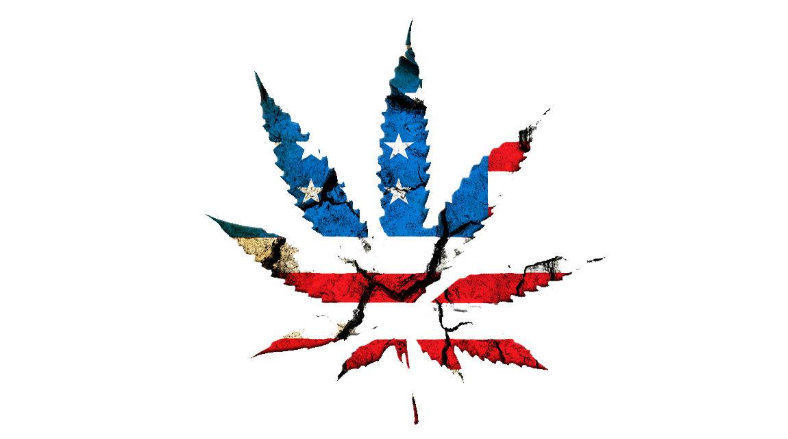 Politique libérale, consommation de cannabis … et problèmes liés au cannabis
